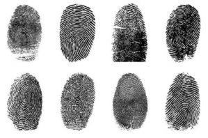 人类的指纹有什么用?
