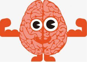 """午休的时候脑脊液开始流入大脑""""打扫卫生"""""""