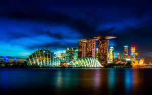 新加坡的区块链支付网Ubin络完成测试阶段
